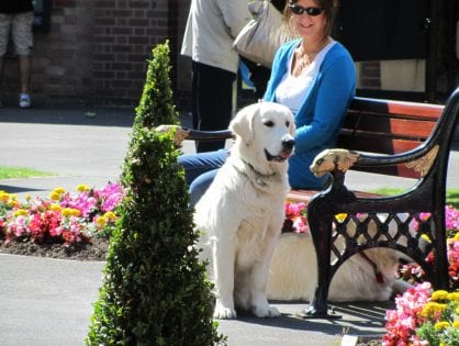 Dog Friendly Places in Lytham