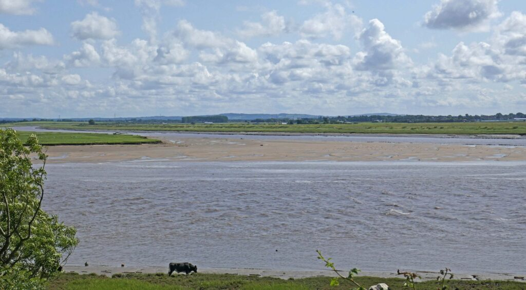 Where the Rivers Ribble and Douglas meet at Freckleton. Photo: Sue Massey